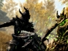 SkyrimSpecialEditionSpriggan_1465779788
