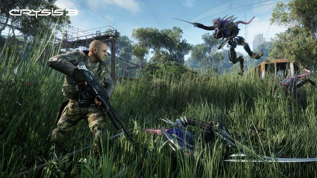 Crysis 3 - Field - 12-6-12 c